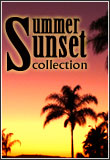Summer Sunset Auction